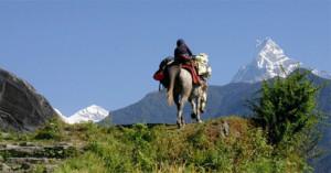 pony-trekking-pokhara